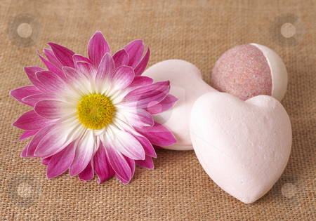 Relaxing spa scene stock photo, Relaxing spa scene with a pink daisy flower and soap balls on mesh material background by Elena Weber (nee Talberg)