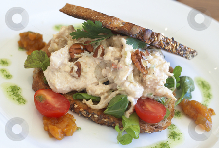 Tasty open sandwich on wholewheat bread stock photo, Tasty open sandwich with mayonnaise chicken, pecan nuts, rocket leaves, parsley and sliced tomatoes on wholewheat bread with seeds by Elena Weber (nee Talberg)