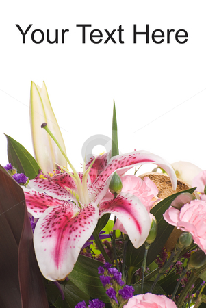 Lily Bouquet stock photo, Closeup view of a lily bouquet with white copyspace above by Richard Nelson