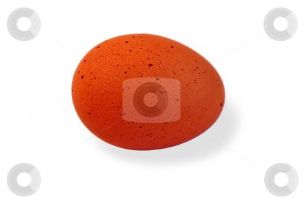 Egg. stock photo, Egg isolated over white with clipping path. by Liana Bukhtyyarova