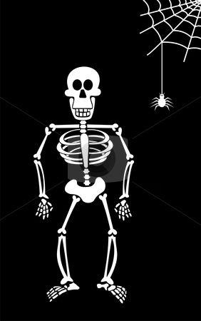 Halloween Skeleton on Black Background.  stock vector clipart, Halloween skeleton and spider hanging from his spiderweb. Black background. Vector available by Cienpies Design