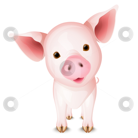 Little pig stock vector clipart, Little pink pig isolated on white background by Laurent Renault