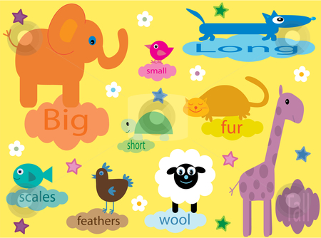 Collection of educational animals for small children stock vector clipart, Vector illustration of a collection of animals for small children educating about differences by Rachel Gordon