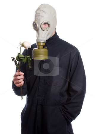 Environmental Issues stock photo, A guy wearing a gas mask is holding a wilting rose, isolated against a white background by Richard Nelson