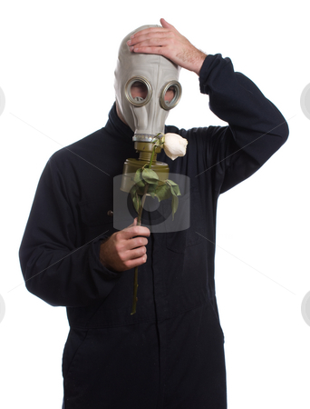 Wilting Rose stock photo, A guy wearing a gas mask is holding a wilting rose, isolated against a white background by Richard Nelson