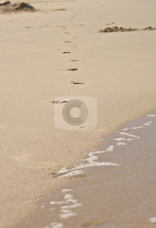 Walking away stock photo, Footprints at the beach come out of the water and walk away by Phil Morley