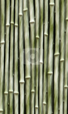 Light green bamboo stock photo, Long vertical bamboo branches in a row by Wino Evertz