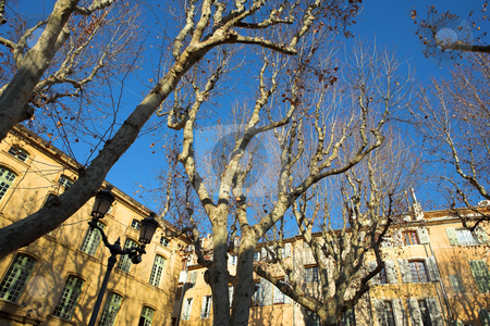 Buildings in Aix-en-provence stock photo, Trees in front of a building in Aix-en-provence, France. by Sean Nel