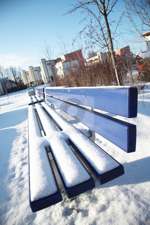 Munich #13 stock photo, Bench covered in snow in a park in Munch.  shallow DOF - trees out of focus by Sean Nel