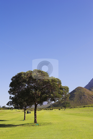 Golf #50 stock photo, A golf course. by Sean Nel