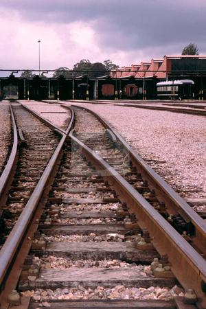 Train tracks stock photo, Train tracks at a holiday station by Sean Nel