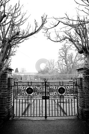 London#5 stock photo, Gate and trees.  Black and white. by Sean Nel
