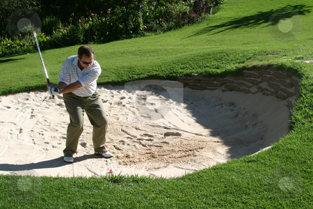 Playing from the bunker stock photo, Playing from the bunker to the green by Sean Nel