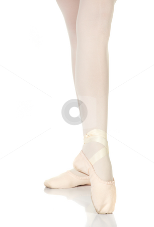 Ballet Steps stock photo, Young caucasian ballerina girl on white background and reflective white floor showing various ballet steps and positions. Pointe. Not Isolated. by Sean Nel