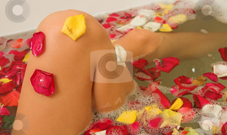 Woman #173 stock photo, Nude woman in a bath. by Sean Nel