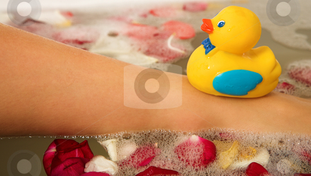 Woman #187 stock photo, Plastic toy duck on the leg of a woman in a bath.  Shallow D.O.F by Sean Nel