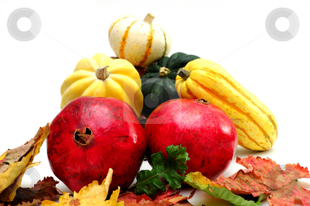 Autumn Produce stock photo, Pomegranates and winter squash including green and yellow acorn, delicata with colorful fall leaves isolated on white by Lynn Bendickson