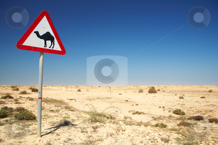 Camel warning sign stock photo, Warning sign for camels on the road next to the roadway in Qatar, Middle East by Sean Nel