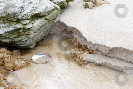 Seasandbackground #2 stock photo, Rocks and shells on the beach - copy space by Sean Nel