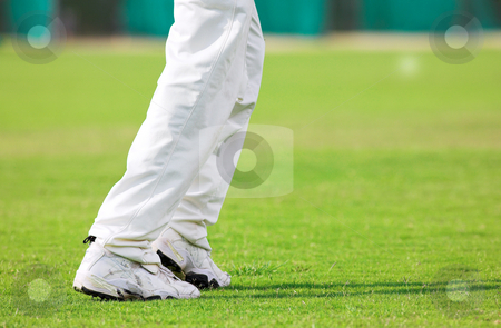 Cricket #3 stock photo, Running Cricketer playing in the late afternoon by Sean Nel