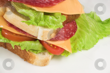Food #26 stock photo, A salami, cheese, tomato and lettuce sandwich on a white plate. by Sean Nel