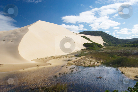 Dunes #4 stock photo, River next to the sand dunes by Sean Nel