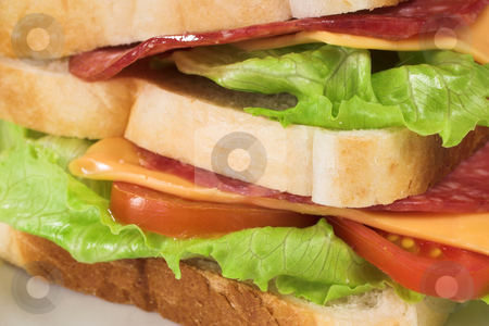 Food #31 stock photo, A salami, cheese, tomato and lettuce sandwich on a white plate by Sean Nel