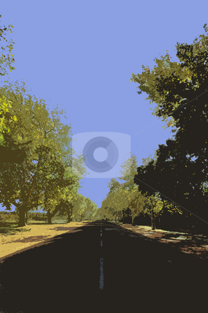 Vector style image of a tree lined road stock photo, Illustration of a tree lined road (not a photograph) by Sean Nel