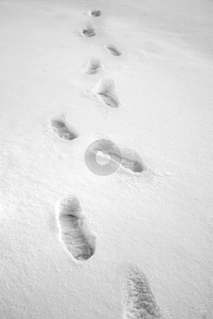 Munich #04 stock photo, Footprints in snow.  Black and white. by Sean Nel