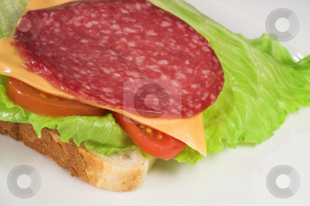 Food #22 stock photo, A salami, cheese, tomato and lettuce sandwich on a white plate by Sean Nel