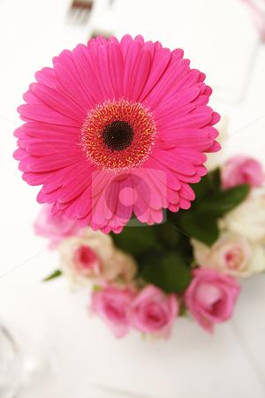 Pink Gerbera stock photo, Pink Gerbera arrangement on table by Sean Nel