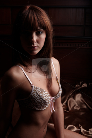 Woman in Lingerie stock photo, Young sexy Caucasian adult woman in lingerie in a bedroom setting. by Sean Nel