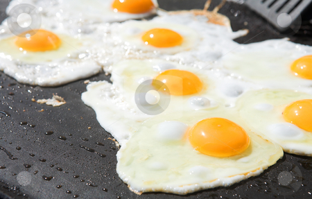 Fresh eggs being fried stock photo, Fresh eggs being fried sunny side up on a large frying pan by Sean Nel