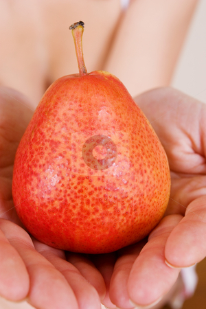 Fruit #2 stock photo, Close-up of hands holding a pear by Sean Nel
