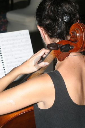 Cellist stock photo, Woman playing cello at a wedding by Sean Nel