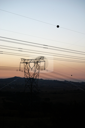 Powercables stock photo, Powerlines running through a national park by Sean Nel