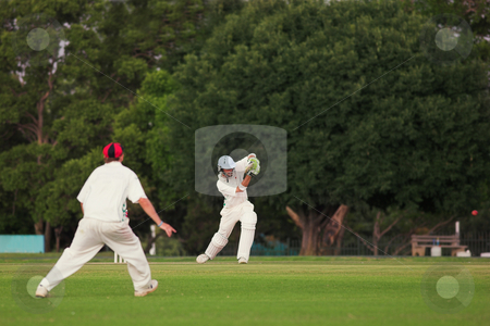 Cricket #5 stock photo, Cricketers playing in the late afternoon by Sean Nel