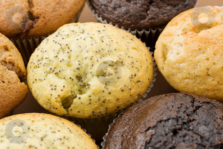 Food #4 stock photo, A Plate of muffins - Poppy seed muffin in focus by Sean Nel