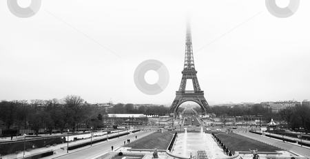 Paris #51 stock photo, The Eiffel Tower in Paris, France.  Black and white.  Copy space. by Sean Nel