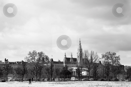 Viennese Landmarks stock photo, The Town Hall (Wien Rathaus) buildings in Vienna, Austria across a snow covered park. Cloudy day at the end of winter by Sean Nel