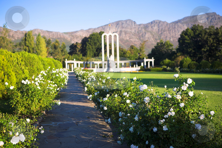 The Huguenot Monument stock photo, Pathway with white flowers leading to the Huguenot Monument in summer with green grass and blooming gardens in Franschhoek, Western Cape, South Africa. Shallow DOF, Focus Flowers in front by Sean Nel