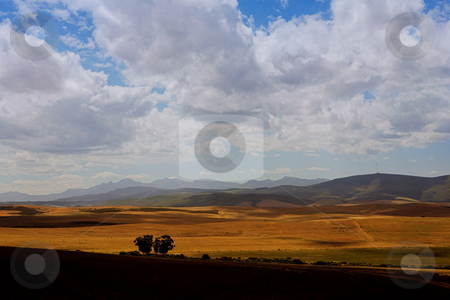 Haybales on the fileds stock photo, Farming fields with mountains in the background by Sean Nel