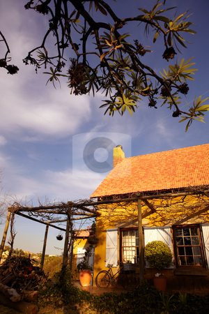 French Farmhouse stock photo, A quaint french farmhouse with a red tin roof and a grapevine outside the shuttered windows on a sunny day. by Sean Nel