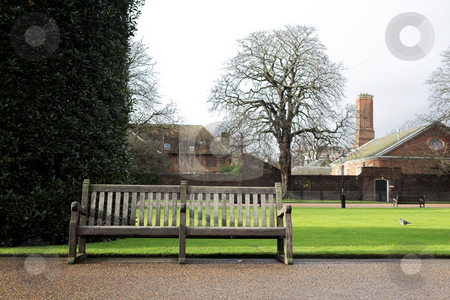 London#8 stock photo, Bench in a park at wintertime. by Sean Nel