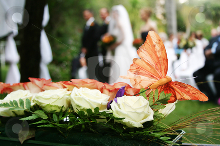 Butterfly stock photo, Butterfly decoration on wedding bouquet by Sean Nel