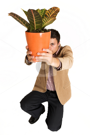 Businessman #127 stock photo, Businessman kneeling down, holding pot plant. by Sean Nel