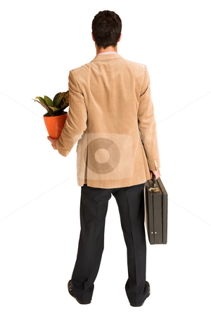 Businessman #134 stock photo, Businessman holding pot plant and leather suitcase. by Sean Nel