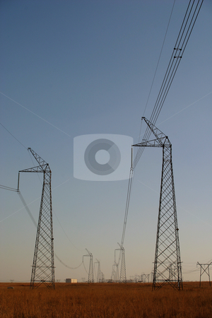 Powercables #4 stock photo, Powerlines running through a national park by Sean Nel
