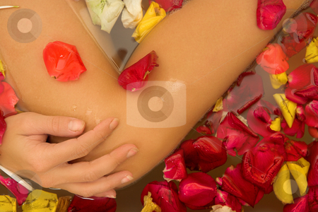 Woman #39 stock photo, Legs of a nude woman in a bath. by Sean Nel