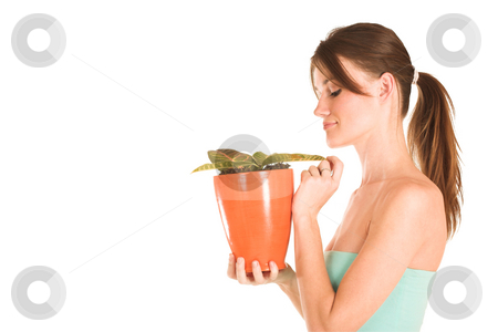 Businesswoman #441 stock photo, Brunette business lady in a light blue top nurturing a pot plant. Looking down -  Copy space. by Sean Nel